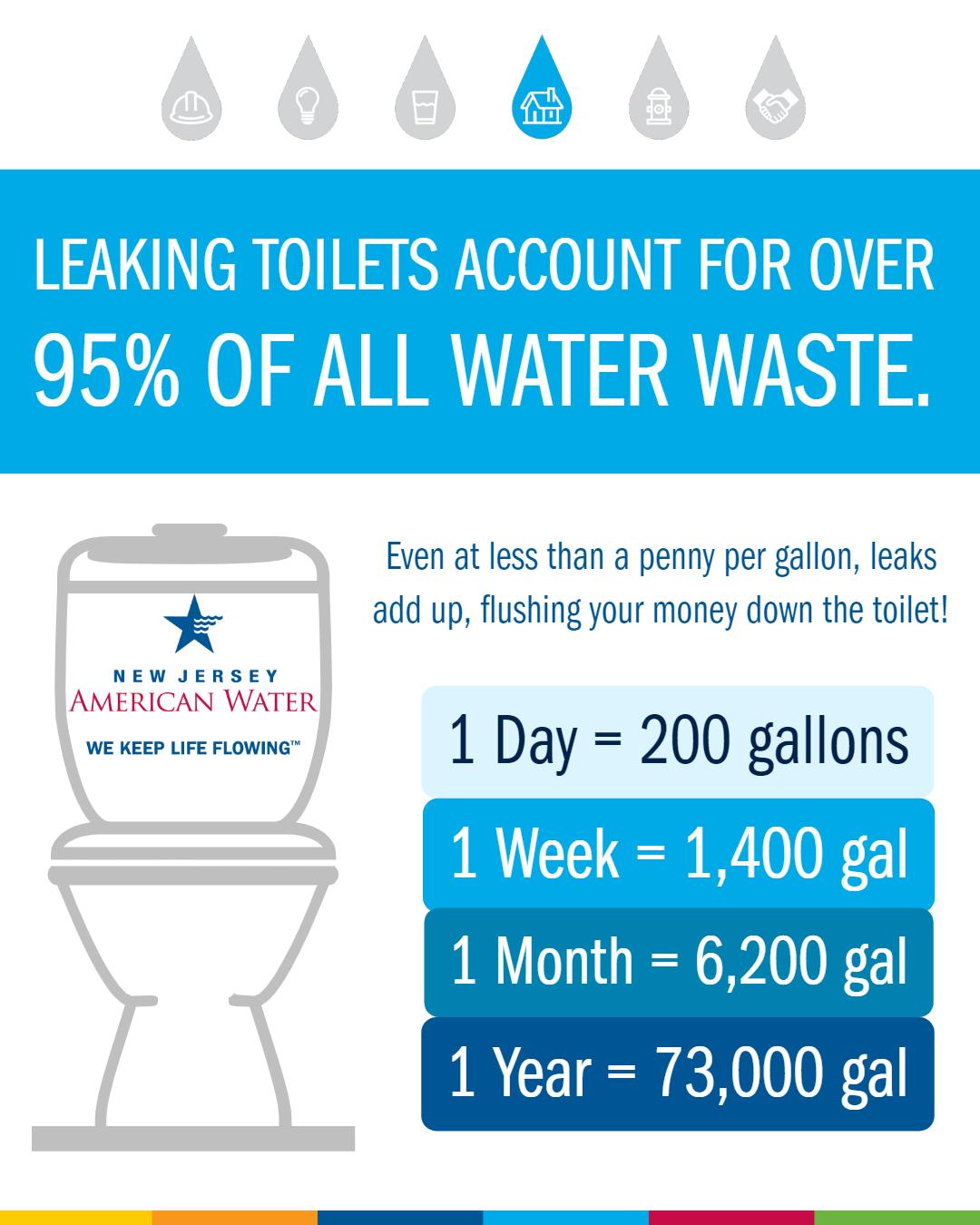 Toilet Leak Infographic