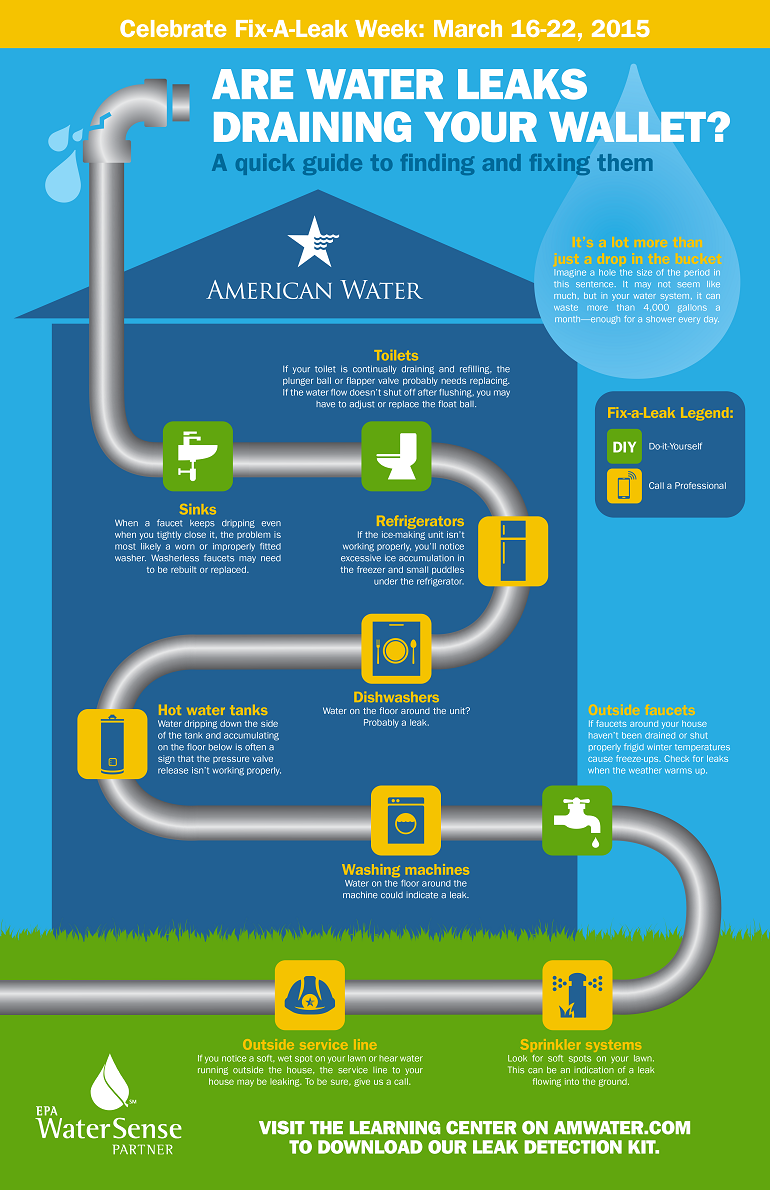 24858Fix A Leak Infographic Image web